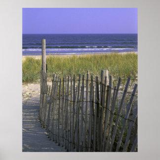 Dunas de la playa póster