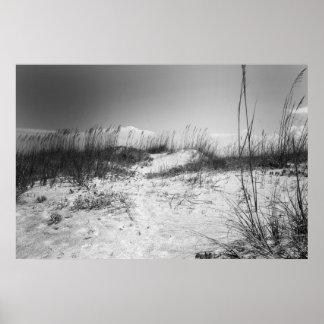 Dunas en blanco y negro impresiones