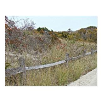 Dunas y parque de estado de la playa de la isla de postales