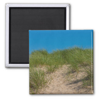 Dune And Oats Magnet