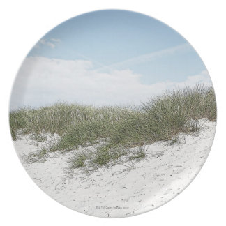 Dune at a beach in scandinavia. melamine plate