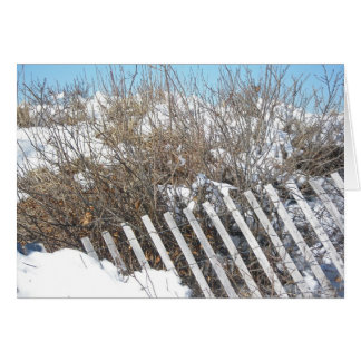 Dune Fence at Woodneck Beach Note Card