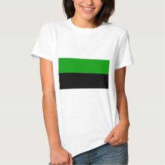 Dune - Flag House Atreides Shirt