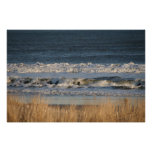Dune Grasses and Surf Canvas Print