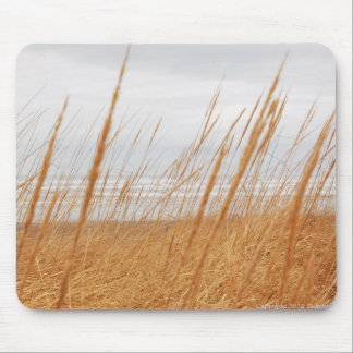 Dune Grasses Mouse Pad