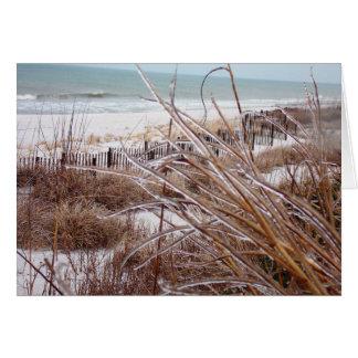 Dune-sicle Card