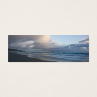 Dunedin Beach at Dusk DSC6544 Mini Business Card