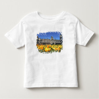 Dunedin Railway Station Toddler T-shirt