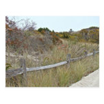 Dunes and Fence Island Beach State Park Postcard