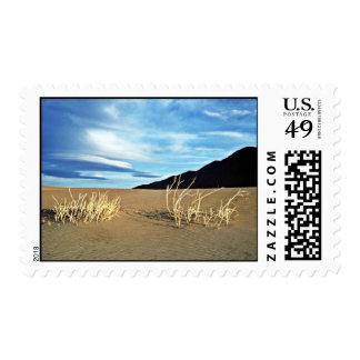 Dunes And Twigs Stamps