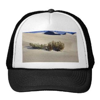 Dunes Desert Trucker Hat