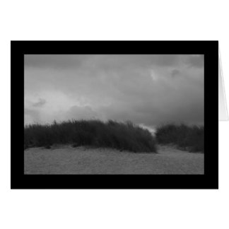 Dunes in black and white card