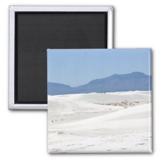 Dunes with Mountain view Refrigerator Magnets