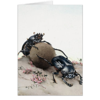 Dung Bettle Greeting Card