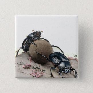 Dung Bettle Pinback Button