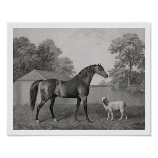 Dungannon, grabado por George Townley Stubbs (1756 Posters