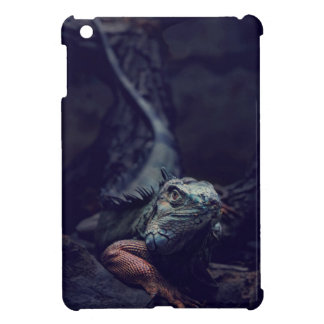 Dungeons And Dragons Cover For The iPad Mini