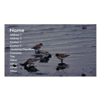 Dunlins en la línea de la playa tarjetas de negocios