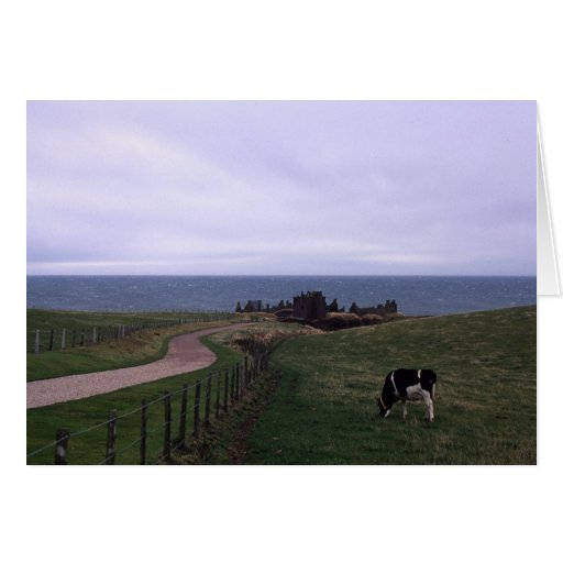 Dunnottar Castle Greeting Cards