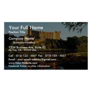 Dunvesan Castle, Isle of Skye Double-Sided Standard Business Cards (Pack Of 100)