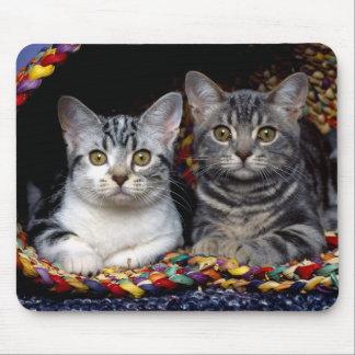 Duo Cat Mousepad