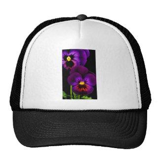 Dúo de los pensamientos púrpuras, flores de estado gorras de camionero