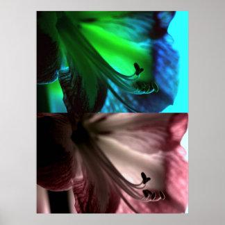 Dúo del arte pop del Amaryllis Impresiones