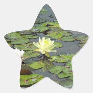 Dúo del lirio de agua pegatina en forma de estrella