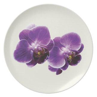 Dúo púrpura de la orquídea plato de comida