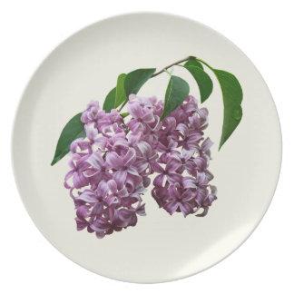 Dúo rosado de la lila platos