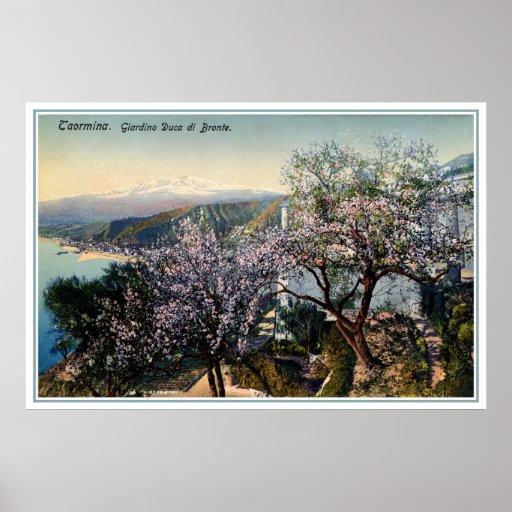 Duque del jardín de Sicilia del vintage de Bronte  Posters
