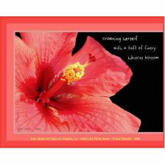 Durable Acrylic Hibiscus Blossom haiku art magnet Acrylic Cut Out