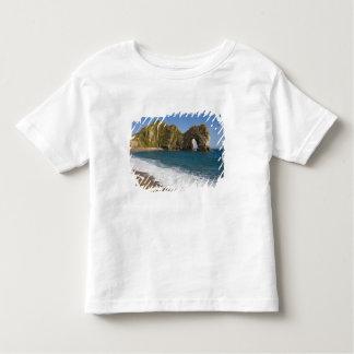 Durdle Door, Lulworth Cove, Jurassic Coast, Toddler T-shirt