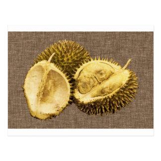 durian3.jpg postcard