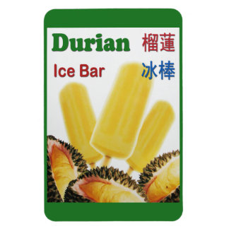 Durian Ice Bar Tropical Fruit Popsicle Magnet