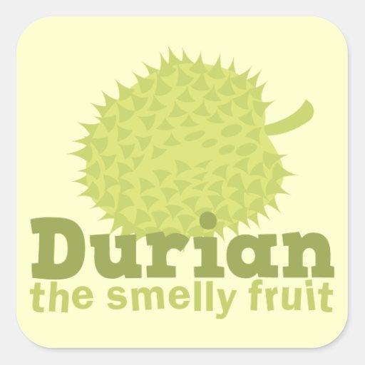 Durian la fruta hedionda (de Asia sudoriental) Pegatina Cuadrada