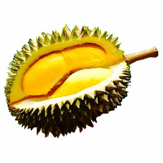 Durian Magnet Cut Outs