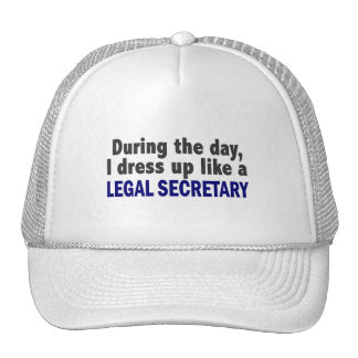 During The Day I Dress Up Like A Legal Secretary Hat