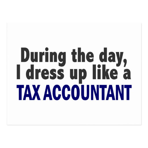 During The Day I Dress Up Like A Tax Accountant Post Cards