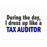 During The Day I Dress Up Like A Tax Auditor Postcard