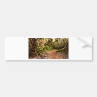 Dusk in Florida Hardwood Hammock Bumper Sticker