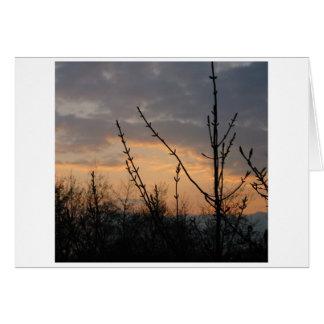 Dusk Light Card