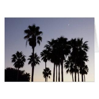 Dusk with Palm Trees Tropical Scene Card