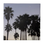 Dusk with Palm Trees Tropical Scene Ceramic Tile