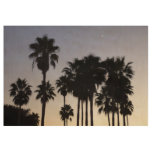 Dusk with Palm Trees Tropical Scene Wood Poster