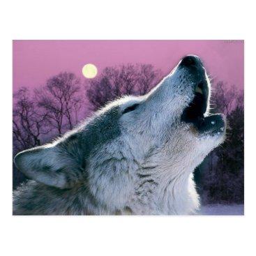 Halloween Themed dusk woodland forest moonlight howling wolf postcard