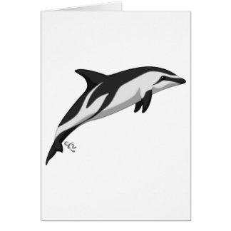 Dusky Dolphin Greeting Cards