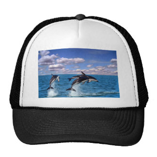Dusky Dolphins At Play Hats