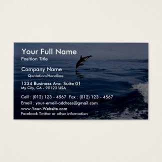 Dusky dolphins, side view, nose dive business card