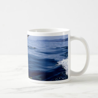 Dusky dolphins side view nose dive mug